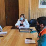 Coyhaique: El jueves deberían definir la fecha de apertura de las ferias libres